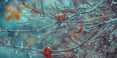 Холодовая аллергия: из практики врача